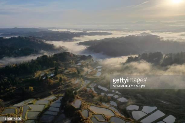 riceterrace in autumn - miyamoto y ストックフォトと画像