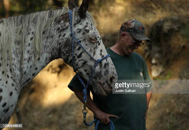 Rich Newell hangs his head as he struggles to get his horse Ike into a trailer as he evacuates ahead of the approaching Carr Fire on July 28 2018 in...