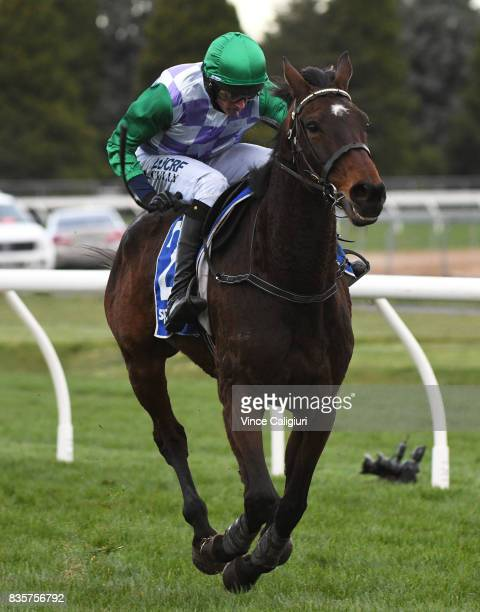 Richard Cully riding Wells races to win Race 6 Grand National Steeple during The Grand National Steeple Day on August 20 2017 in Ballarat Australia