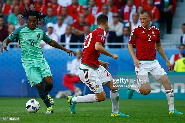 Richard Guzmics and Adam Lang of Portugal vie with Sanches of Hungary during the UEFA EURO 2016 Group F match between Hungary and Portugal at Stade...