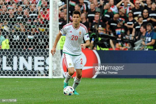Richard GUZMICS of Hungary during the UEFA EURO 2016 Group F match between Iceland and Hungary at Stade Velodrome on June 18 2016 in Marseille France