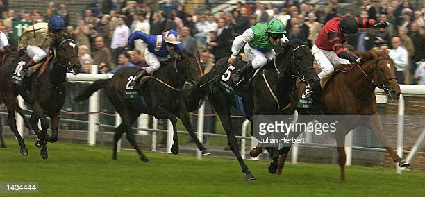 Richard Hills and Sharplaw Venture get the better of thew Kieren Fallon ridden Hector's Girl to land The Watership Down Stud Sales Race run at Ascot...