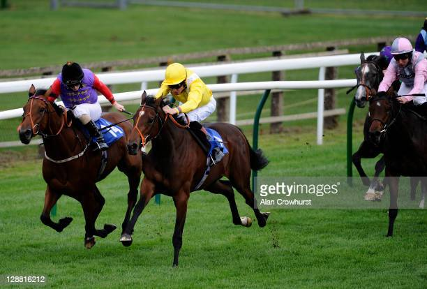 Richard Hughes riding Operettist win the Bathwick Tyres Maiden Fillies' Stakes at Salisbury racecourse on October 10 2011 in Salisbury England