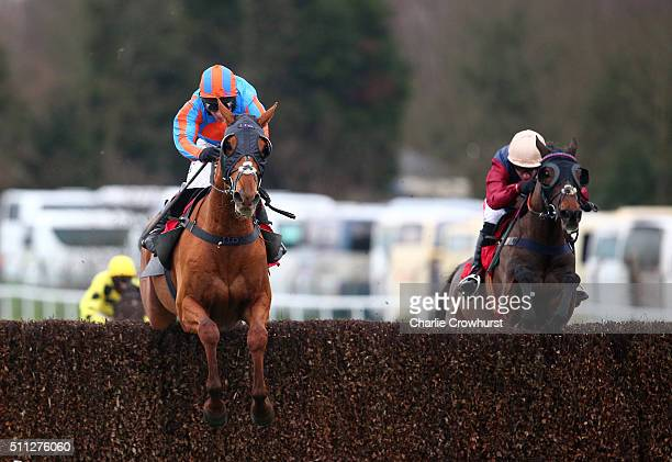 Richard Johnson rides Beg To Differ to win The Ascot Underwriting Handicap at Sandown Park on February 19 2016 in Esher England