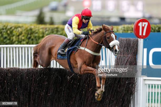 Richard Johnson riding Native River on their way to winning The Timico Cheltenham Gold Cup Steeple Chase at Cheltenham racecourse on Gold Cup Day on...