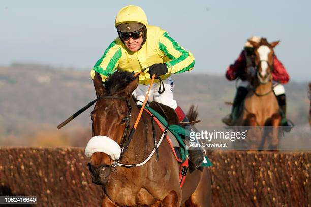 Richard Johnson riding Synopsis clear the last to win The CF Roberts Electrical Mechanical Services Mares' Handicap Chase at Cheltenham Racecourse on...