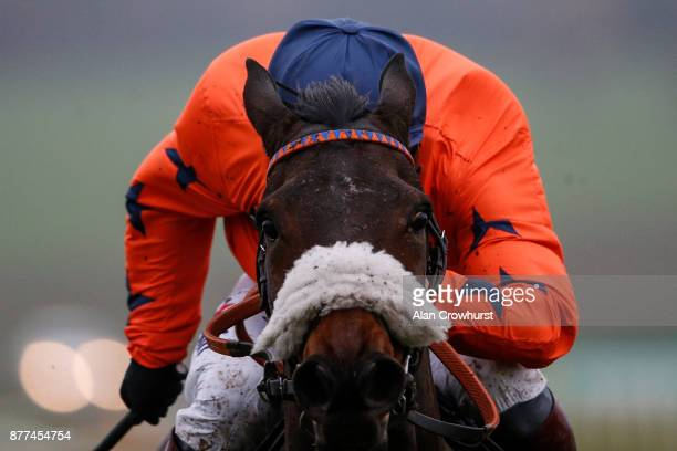 Richard Johnson riding Western Ryder clear the last to win The Angela Nettleford Memorial Novicesâ Hurdle Race at Chepstow racecourse on November 22...
