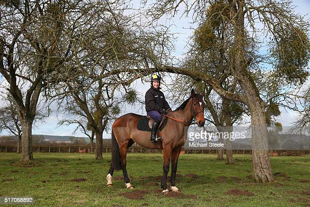 Richard Johnson the National Hunt champion elect jockey poses for a portrait at his family farm on Looks Like Trouble who he rode to victory in the...