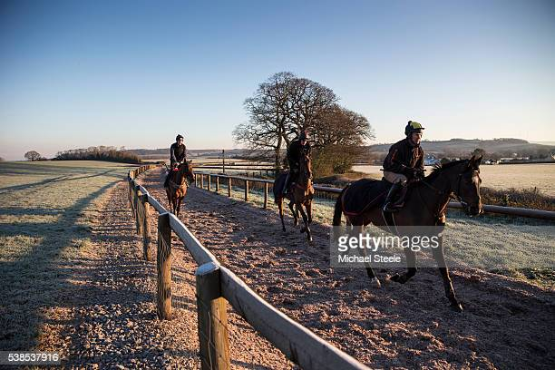 Richard Johnson Tom O'Brien and Ciaran Gethings on frosty ground at Sandhill Racing Stables on January 20 2016 in Minehead England Sandhill Racing...