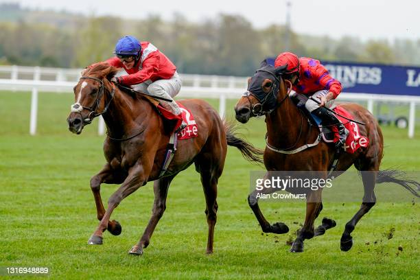Richard Kingscote riding Lights On win The tote+ Exclusively At tote.co.uk British EBF Fillies' Handicap at Ascot Racecourse on May 08, 2021 in...