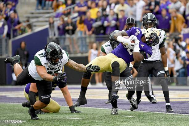 Richard Newton of the Washington Huskies scores on a wildcat play during second quarter of the game against the Hawaii Warriors at Husky Stadium on...