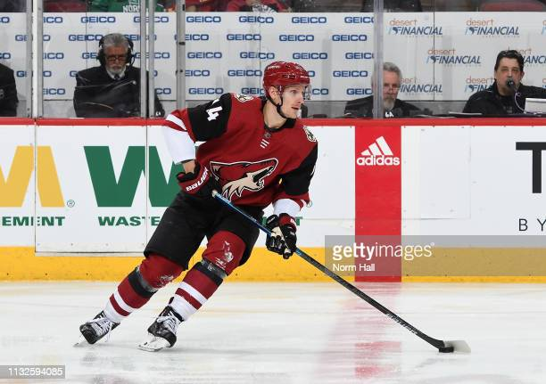 Richard Panik of the Arizona Coyotes skates the puck up ice against the Florida Panthers at Gila River Arena on February 26 2019 in Glendale Arizona