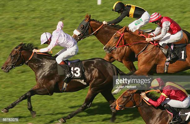Richard Quinn and High Bray lead the field home to land The Rich Products Corporation Stakes Race run at Goodwood Racecourse on September 27 2005 in...