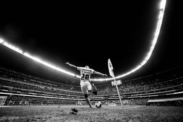 UNS: Offbeat Sports Pictures of the Week - December 9