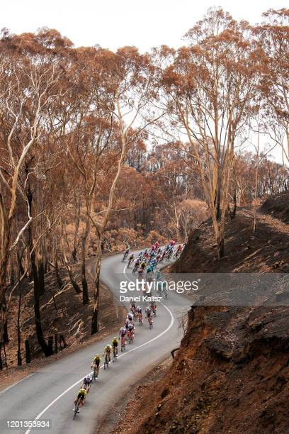 Richie Porte of Australia and Team Trek-Segafredo / Michael Hepburn of Australia and Team Mitchelton-SCOTT / Cameron Meyer of Australia and Team...