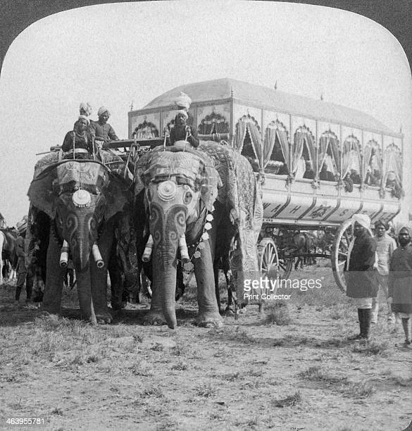 Richly adorned elephants and carriage of the Maharaja of Rewa at the Delhi Durbar India 1903 Detail from a stereoscopic card The Delhi Durbar of 1903...