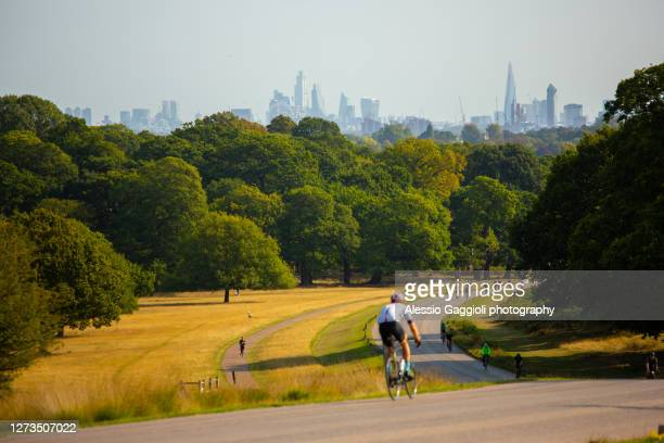 richmond park, london - richmond upon thames stock pictures, royalty-free photos & images