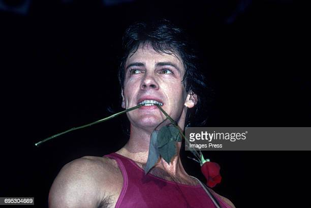 Rick Springfield in concert circa 1981 in New York City