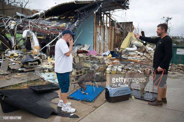 Rick Teska helps a business owner rescue his dogs from the damagd business after hurricane Michael passed through the area on October 10 2018 in...