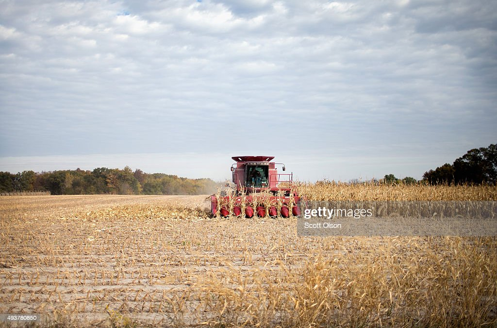 Iowa Farmers Harvest Crops As Colder Weather Brings Season's End Near : News Photo