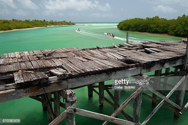 rickety wooden bridge in the sian ka'an biosphere - sian ka'an biosphere reserve stock photos and pictures