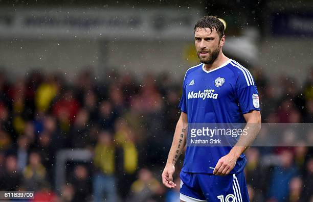 Rickie Lambert of Cardiff City looks on during the Sky Bet Championship match between Burton Albion and Cardiff City at Pirelli Stadium on October 1...