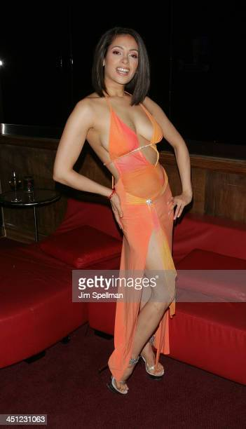 Rick's Cabaret Girl attends the 2008 Penthouse Pet of the Year Erica Ellyson Private Dinner Party at Rick's Cabaret on March 12 2008 in New York City