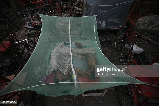 Rickshaw pullers sleep while covering himself under mosquito net amid dengue outbreak on September 17 2015 in New Delhi India Delhi remained in the...