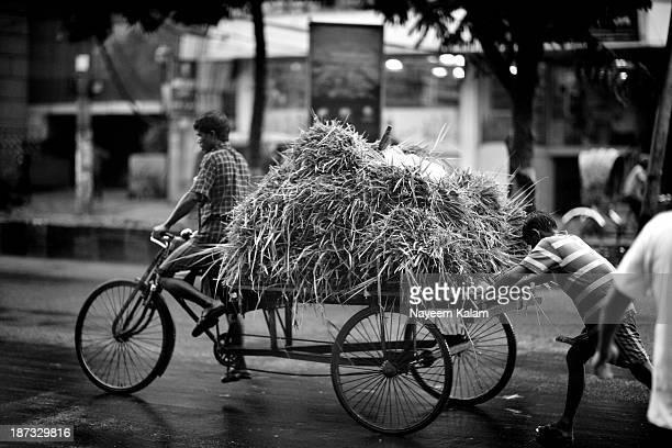Rickshaw-van full of green grass for you.... Through the windshield..... CDA Avenue, Chittagong.