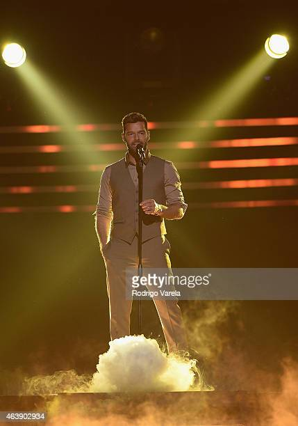 Ricky Martin performs onstage at the 2015 Premios Lo Nuestros Awards at American Airlines Arena on February 19 2015 in Miami Florida