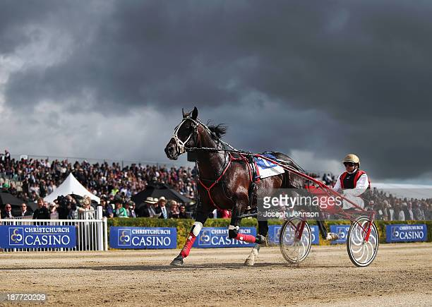 Ricky May the driver of Terror to Love warm up prior to the Christchurch Casino New Zealand Trotting Cup during New Zealand Trotting Cup Day at...