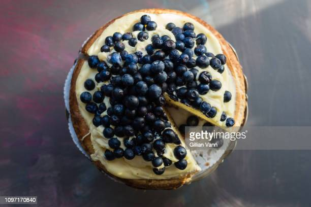 ricotta cheesecake with blueberries - torta di ricotta foto e immagini stock