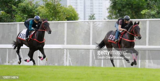 LAND ridden by Alexis Badel and SEASONS BLOOM ridden by Joao Moreiragalloping on the turf at Sha Tin 16NOV17
