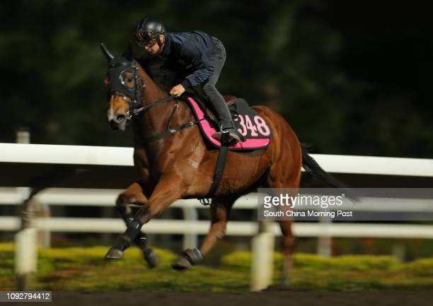 S LAD ridden by Alexis Badel galloping on the all weather track at Sha Tin 31JAN17
