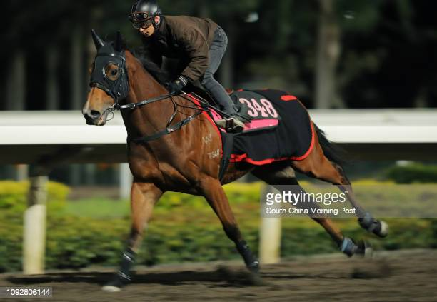 S LAD ridden by Alexis Badel galloping on the all weather track at Sha Tin 09FEB17