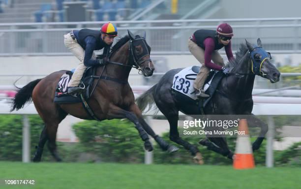 ridden by Blake Shinn and BASIC TRILOGY gallop on the turf at Sha Tin 21APR16