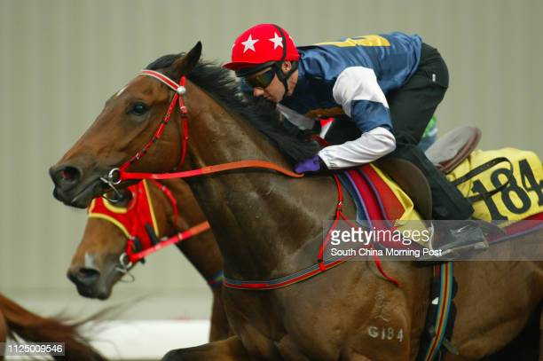 Ridden by Brett Prebble in the barrier trial batch 2 over 1200 Metres at Sha Tin. 02 March 2007