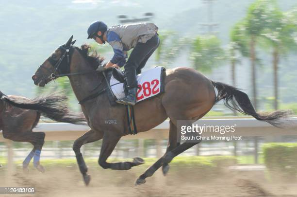 Ridden by Derek Leung Ka-chun trial in batch 2 over 1200Metres (All Weather Track at Sha Tin. 20SEP14