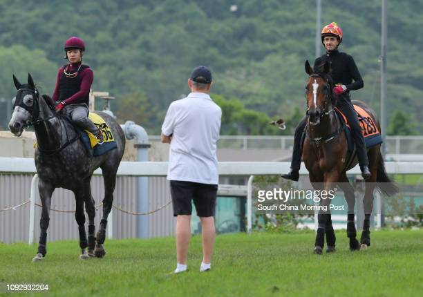 CHARISMA ridden by Douglas Whyte and PABLOSKY going back to stable after gallop on the turf at Sha Tin John Moore looking the horse 25MAY17