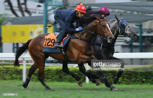 CHARISMA ridden by Douglas Whyte galloping on the turf at Sha Tin 24APR17