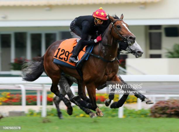 CHARISMA ridden by Douglas Whyte galloping on the turf at Sha Tin 25MAY17 PABLOSKY