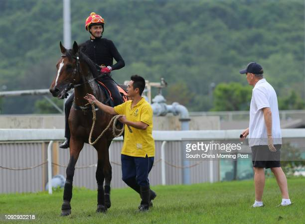 CHARISMA ridden by Douglas Whyte going back to stable after gallop on the turf at Sha Tin John Moore looking the horse 25MAY17