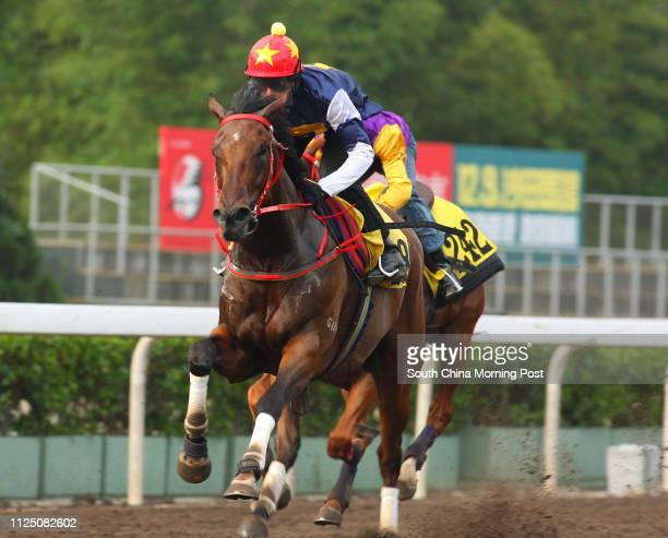 Ridden by Douglas Whyte trial in batch 3 over 1050 Metres at Sha Tin. 11 September 2007
