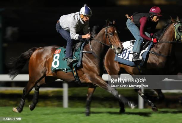STAR ridden by Hugh Bowman galloping on the turf at Sha Tin 08DEC16
