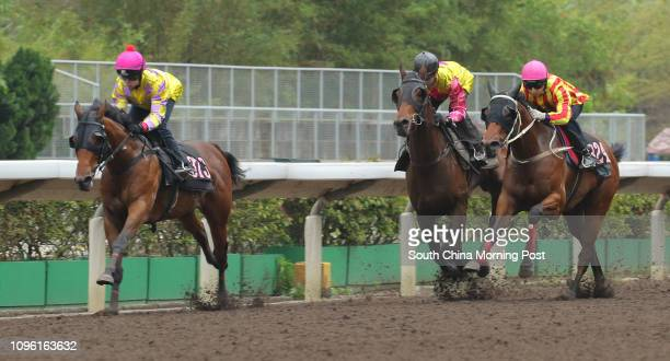 BOY ridden by Kei Chiong Kakei won the barrier trial batch 3 over 1200Metres CIRCUIT KING ridden by Matthew Chadwick and ATOMIC BLAST ridden by Joao...