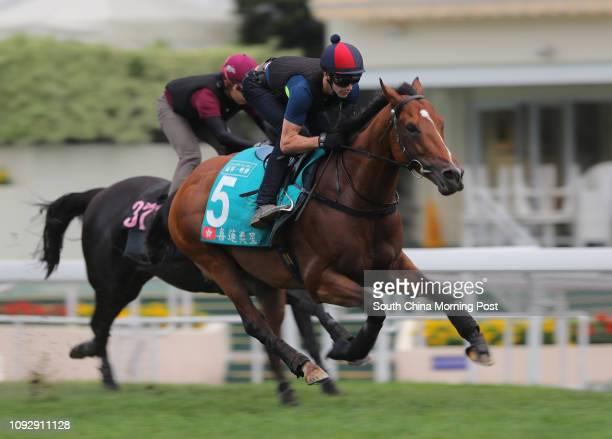 PARAGON ridden by Sam Clipperton galloping on the turf at Sha Tin 04MAY17