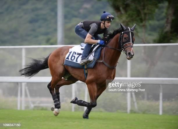 PARAGON ridden by Sam Clipperton galloping on the turf at Sha Tin on 29Sep16
