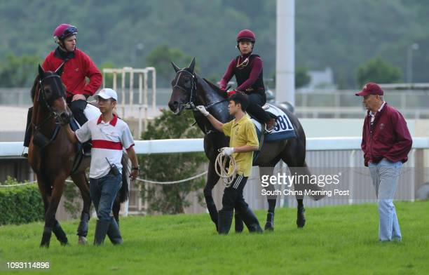 ridden by Tommy Berry and LET US WIN going back to stable after gallop on the turf at Sha Tin on 16Nov17 Trainer John Moore looking at the horse...