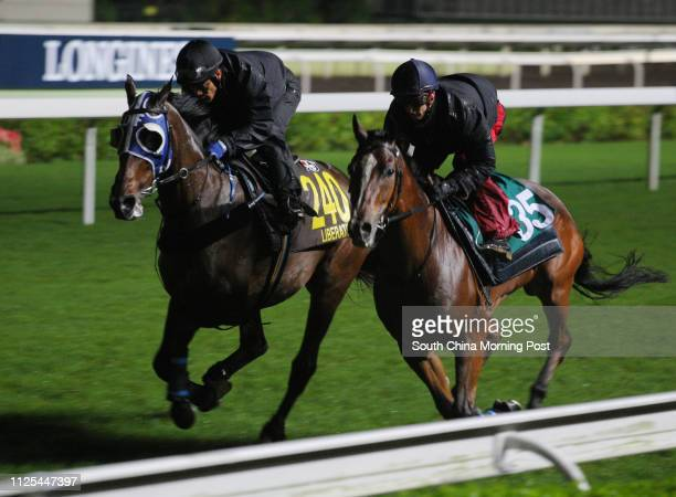 LIBERATOR ridden by Weichong Marwing and NAVEL ORANGE ridden by Zac Purton gallop on the turf at Sha Tin 03DEC12