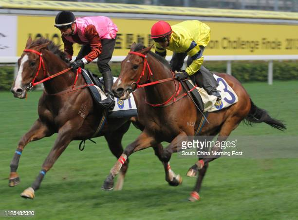 KONG ridden by Zac Purton and TRUMP ridden by Gerald Mosse trial in batch 2 over 1200Metres at Happy Valley on 16Feb13
